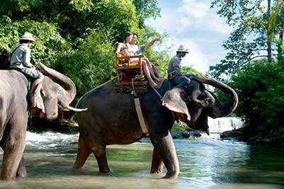 Marina Park, Zoo, Elephant Riding